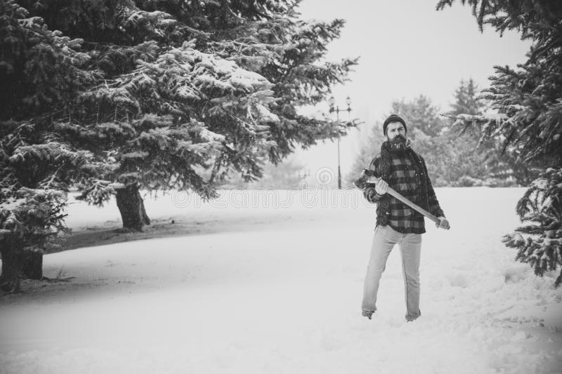 Man with beard in winter forest with snow hold axe. Wanderlust, hiking and travel. Winter holiday and celebration. New year man in snowy cold forest. Christmas stock photography