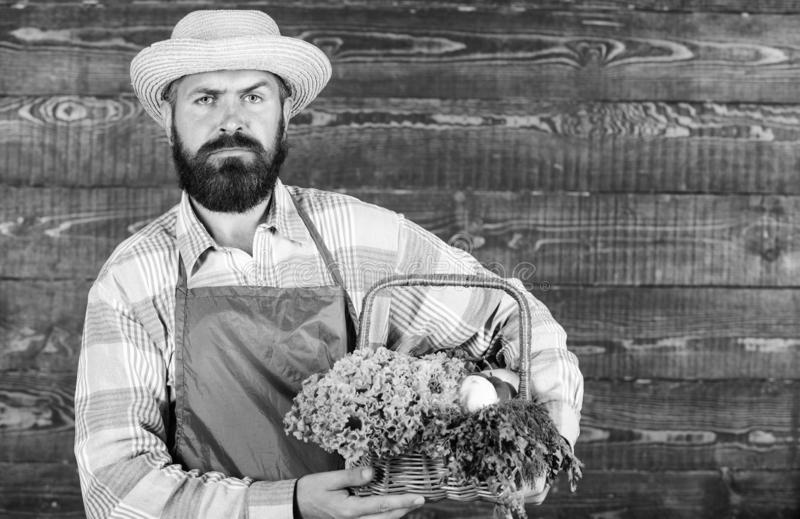 Man bearded farmer presenting eco vegetables wooden background. Farmer straw hat deliver fresh vegetables. Farm delivery. Service deliver fresh vegetables stock images
