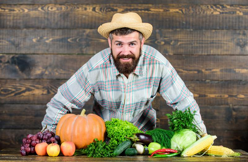 Man bearded farmer with vegetables rustic style background. Buy vegetables local farm. Locally grown crops concept. Local market. Homegrown vegetables. Farm royalty free stock image