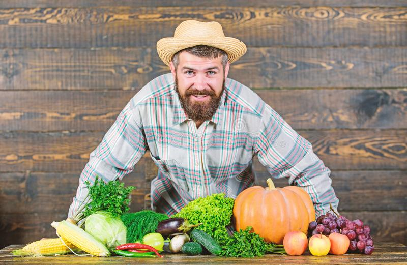 Man bearded farmer with vegetables rustic style background. Buy vegetables local farm. Locally grown crops concept royalty free stock photos