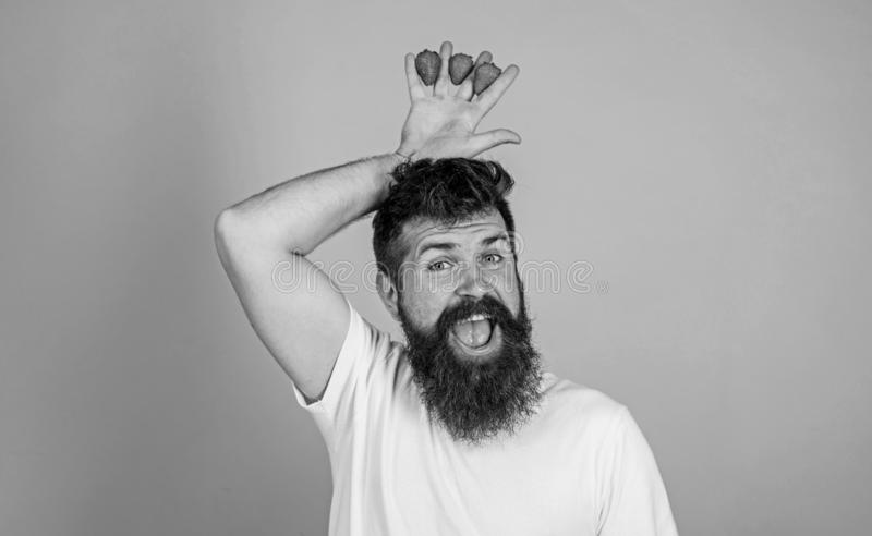 Man bearded hipster holds hand with strawberries above head as crown. Strawberry king concept. Hipster happy bearded. Face with crown. Man successful gardener royalty free stock image