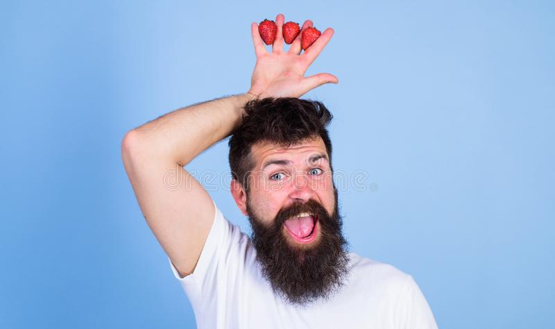 Man bearded hipster holds hand with strawberries above head as crown. Strawberry king concept. Man successful gardener. King of strawberry blue background royalty free stock photography