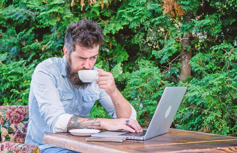 Man bearded hipster sit outdoors with laptop surfing internet and drinking coffee. Book apartment online. Guy looking. For apartment. Find apartment for royalty free stock image