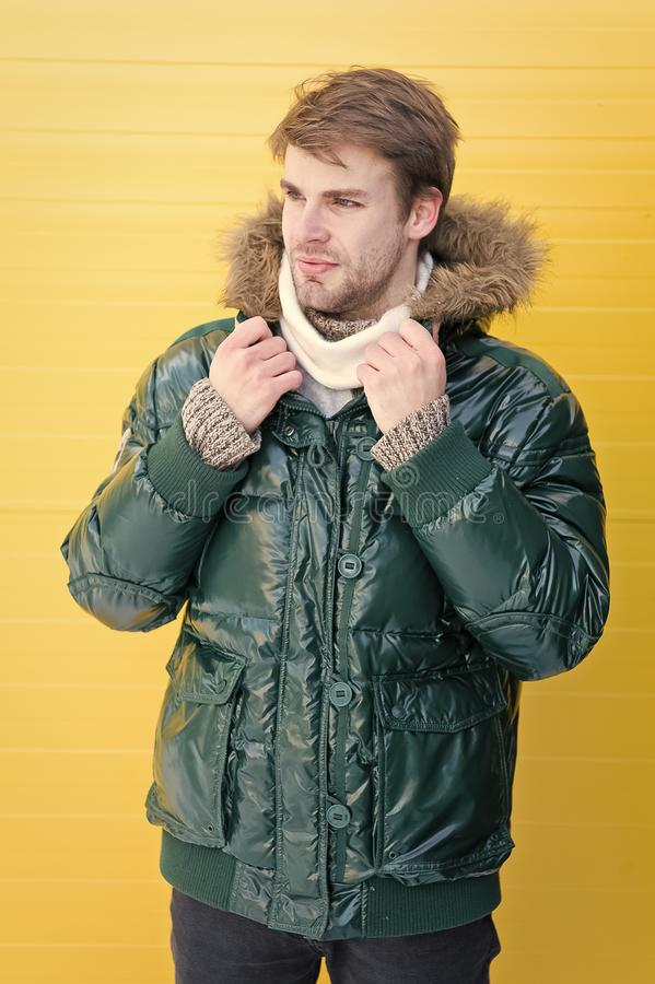 Man bearded hipster wear warm jacket with fur yellow background. Guy wear warm jacket with hood. Feel comfortable in royalty free stock photos