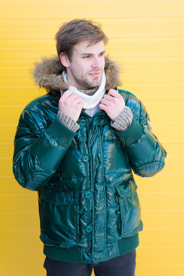 Man bearded hipster wear warm jacket with fur yellow background. Guy wear warm jacket with hood. Feel comfortable in stock photo