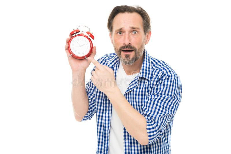 Man bearded mature guy hold alarm clock. Time management skill. Take control of time. Self discipline concept. How to. Avoid being late. Being late is habit royalty free stock photo