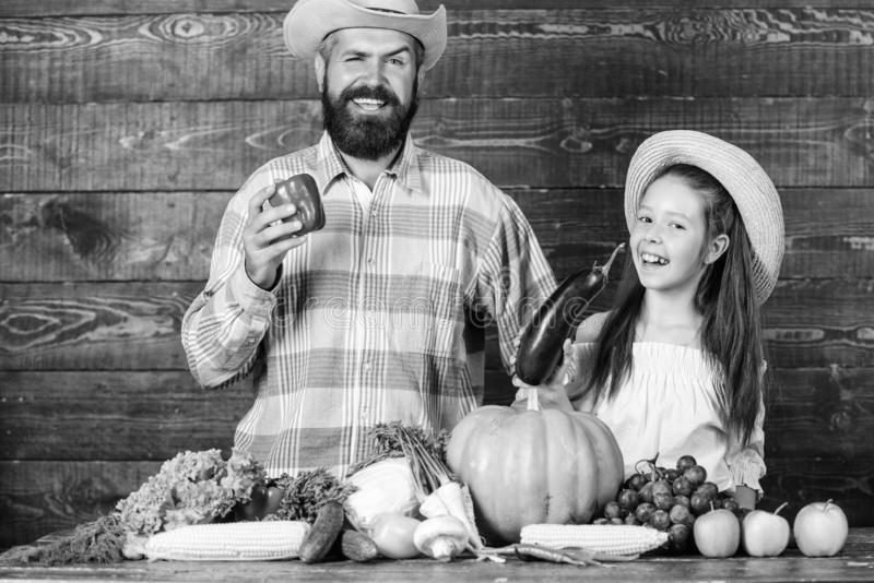 Man bearded rustic farmer with kid. Family father farmer gardener with daughter near harvest vegetables. Farm market royalty free stock photo
