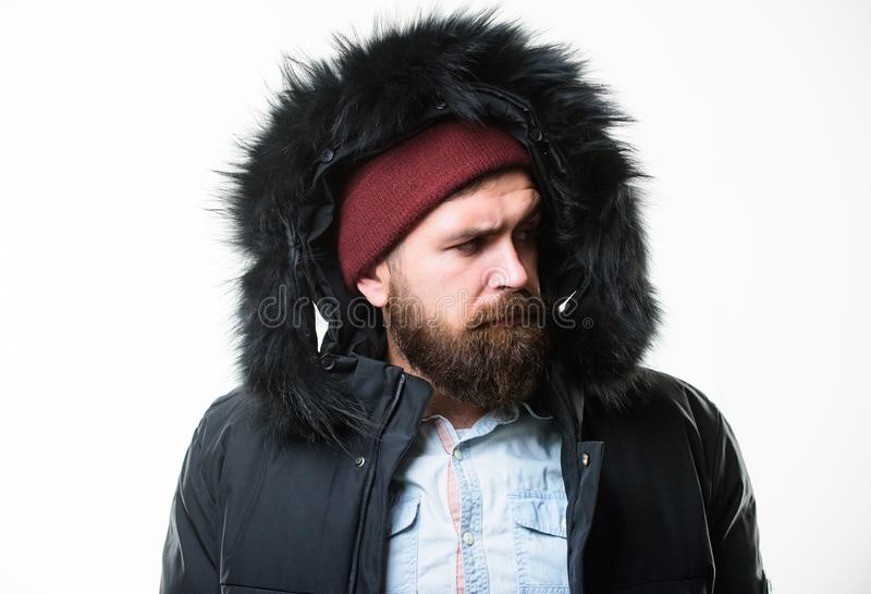 Man bearded stand warm jacket parka isolated on white background. Hipster winter fashion. Guy wear black winter jacket. With hood. Prepared for weather changes royalty free stock photography