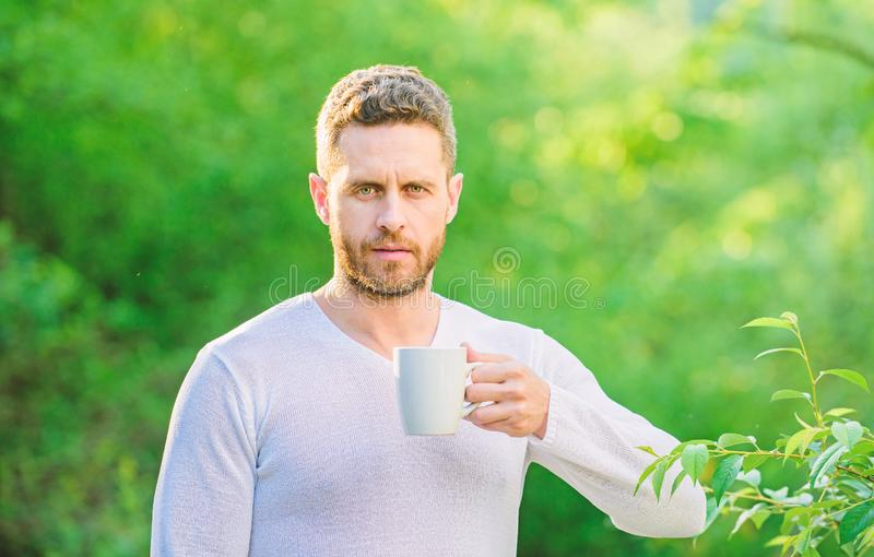 Man bearded tea farmer hold mug nature background. Green tea contains bioactive compounds that improve health. Whole stock images