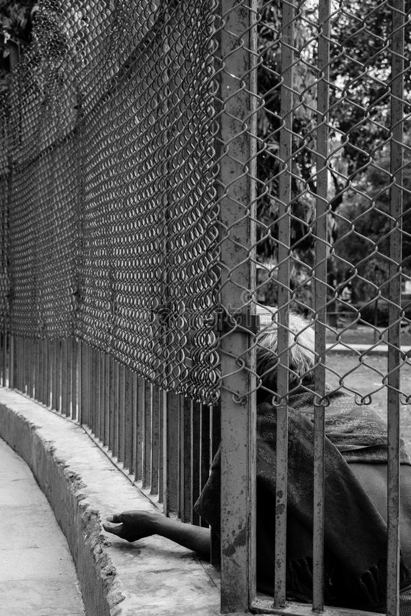Man begging through a fence royalty free stock photography