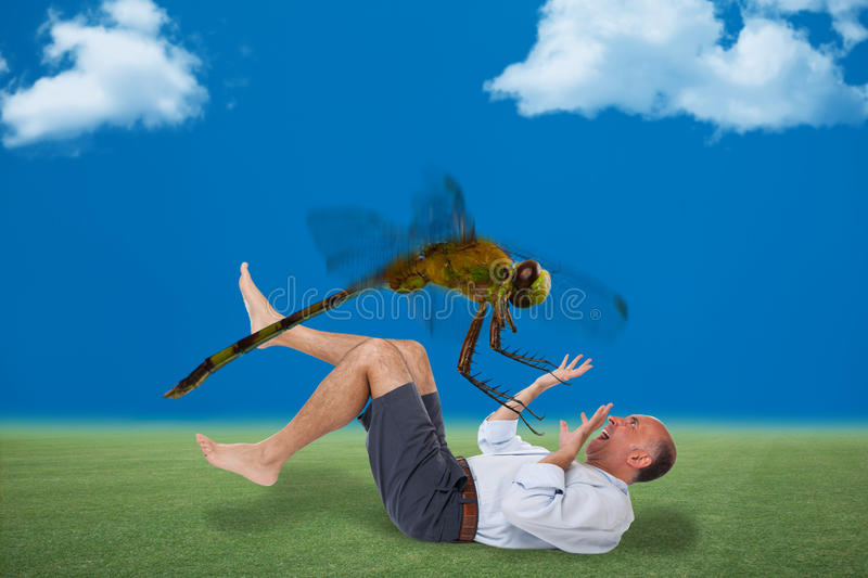 Man being attacked by a dragon fly royalty free stock images
