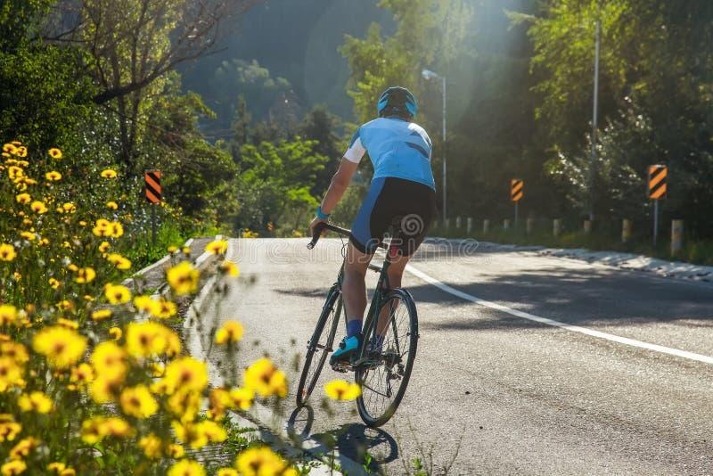 Athlete on the road bike. Training on the asphalt road in the forest. Kazakhstan, Almaty, Medeo stock image