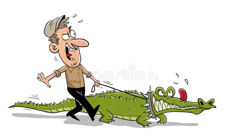 Man with crocodile pet walking down the road. Man with big green hungry crocodile pet walking down the road stock illustration