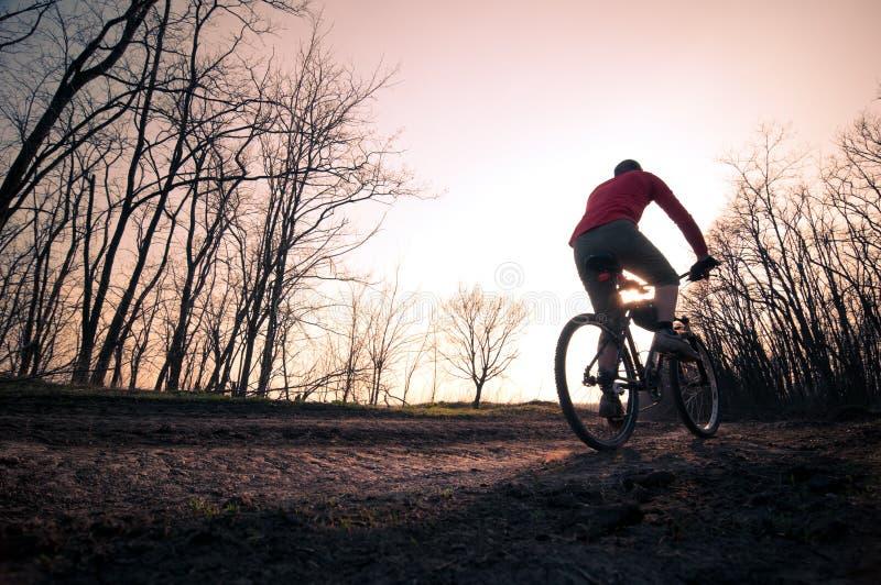 Download Man biking at sunset stock photo. Image of activity, bike - 19716806