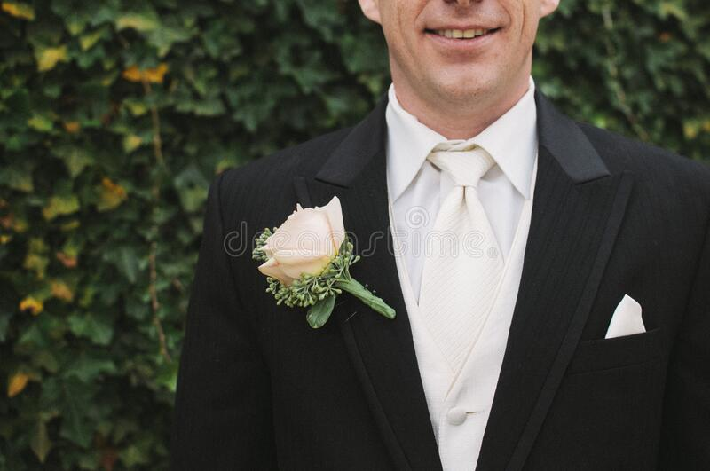 Man in Black Formal Suit With White Necktie Beside Green Bush in Shallow Focus Photography royalty free stock images