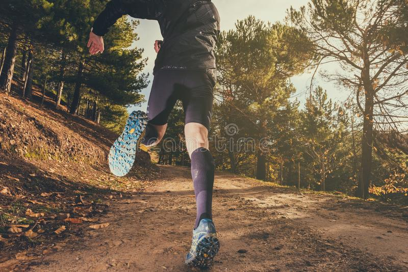 Trail running shoes royalty free stock images