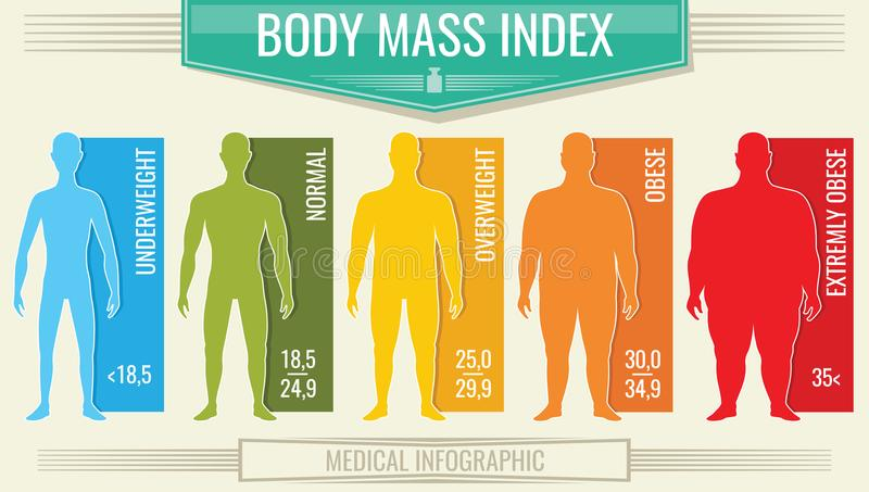 Man body mass index. Vector fitness bmi chart with male silhouettes and scale. Body mass index fot health life, obesity and overweight illustration royalty free illustration