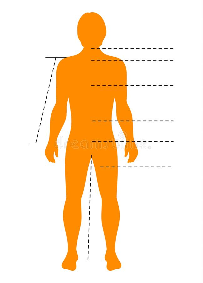 Man body silhouette with pointers and indicators for medical, sport and fashion infographics. Vector isolated template.  stock illustration