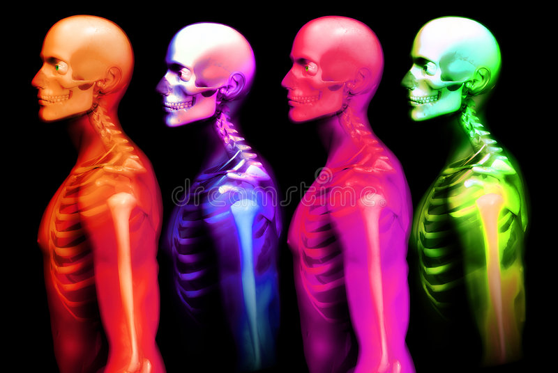 Man Bone 2 Stock Photography