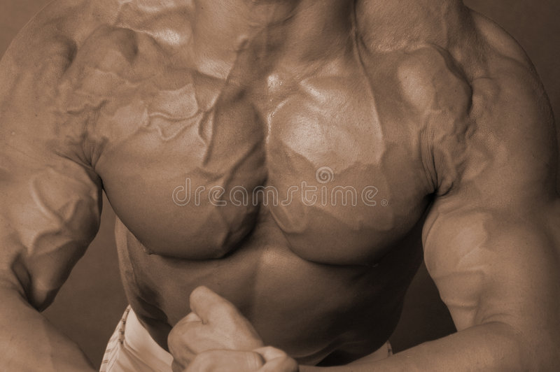 Download Man boobs stock image. Image of vessels, jacked, dude - 1099717