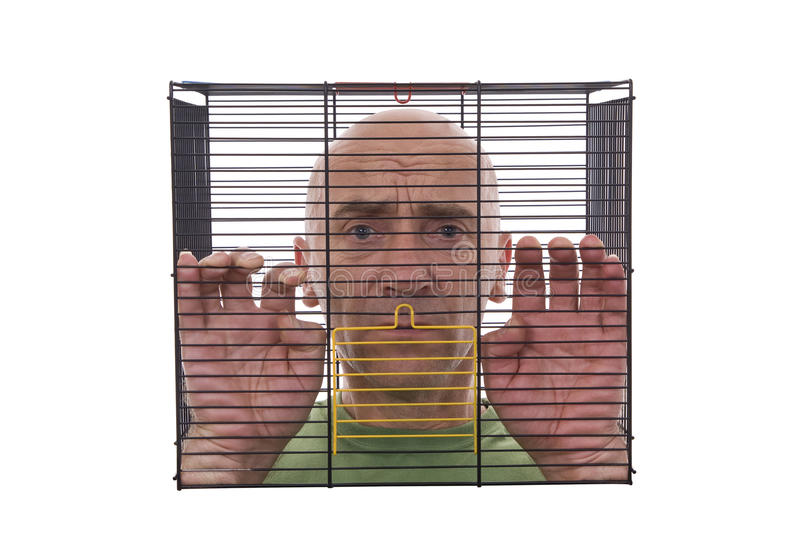 Man in cage. Adult of man closed in cage on white background stock photography