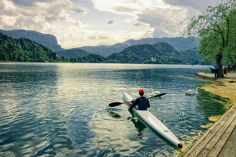 Man canoeing on Bled Lake, Slovenia stock photography