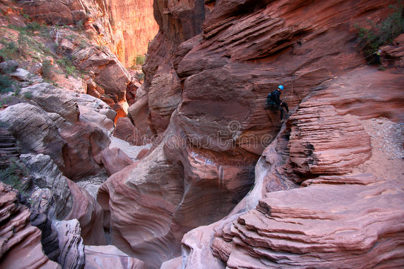 Man in canyon royalty free stock photo