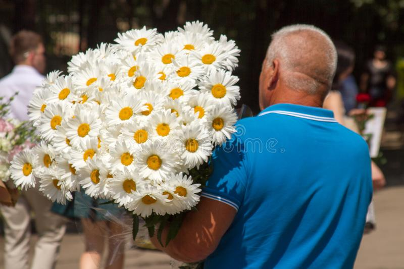 A man carries a huge bouquet of white daisies for congratulations for a wedding, birthday royalty free stock photos