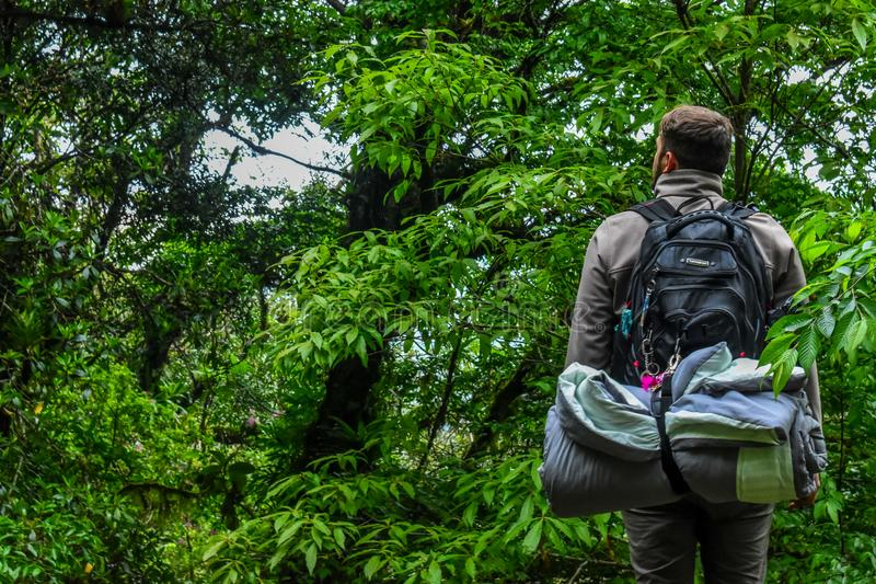 Man Carrying Camping Backpack Standing In-front of Tree stock image