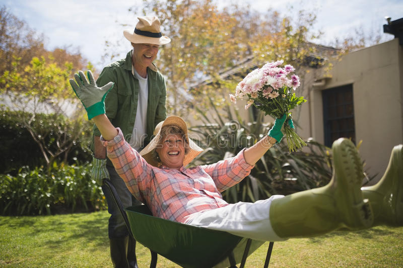Man carrying cheerful senior woman holding bouquet in wheel borrow. Man carrying cheerful senior women holding bouquet in wheel borrow at backyard stock image