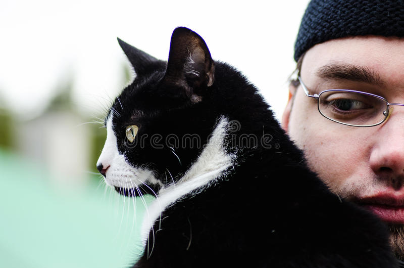 Man and cat royalty free stock image