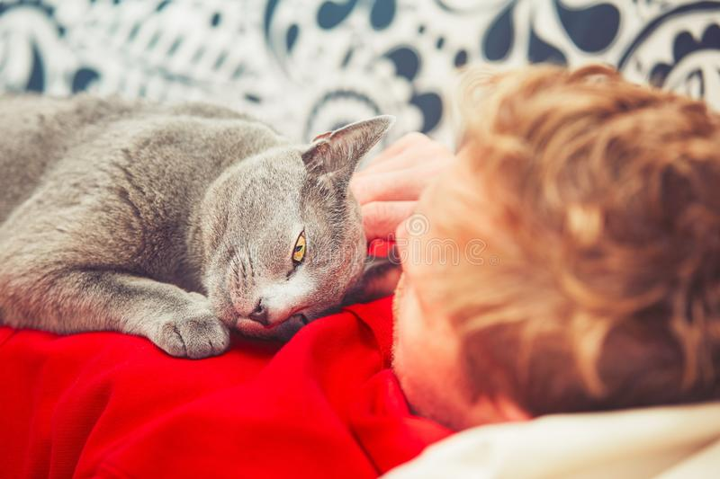 Man with cat. Young man with his russian blue cat at the home royalty free stock photos