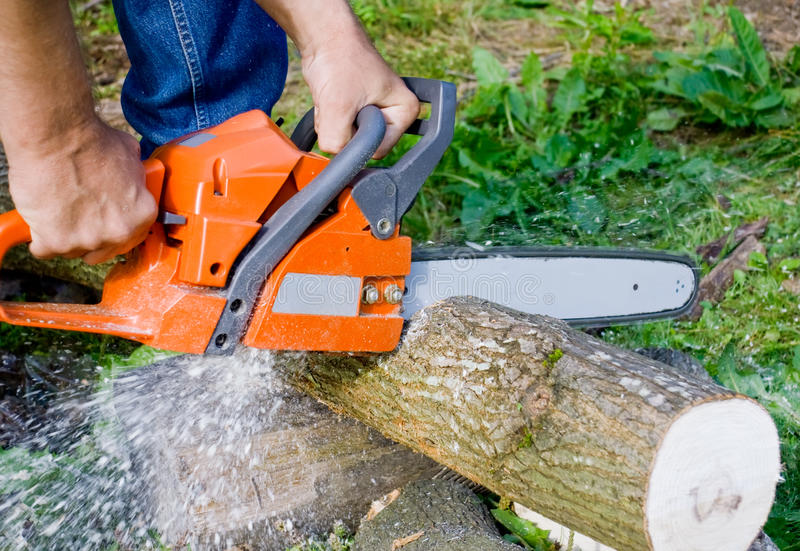 Man with chainsaw royalty free stock images