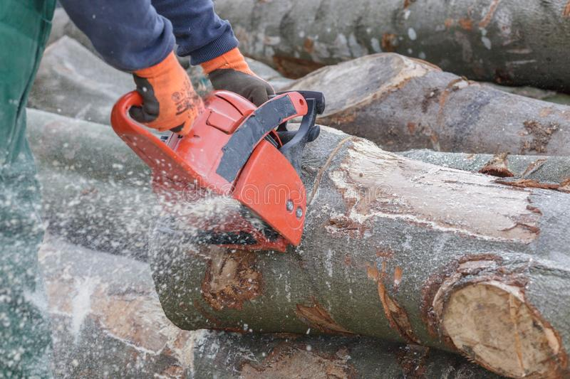 Man with chainsaw making firewood stock images