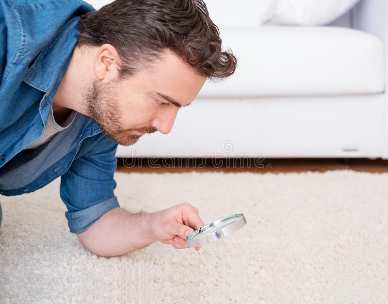 Man checking for carpet dust mites and bug parasites stock images