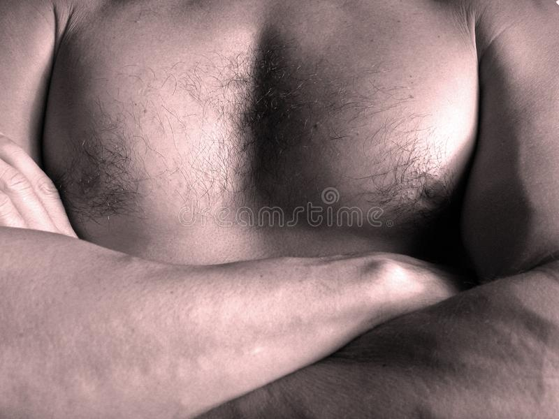 Man Chest Free Stock Images