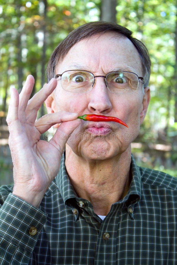 Man Chilli Pepper Mustache. Senior adult holds a red chili pepper under his nose in a mustache position with a silly look on his face royalty free stock photo