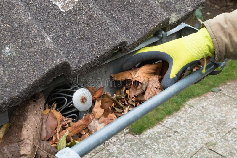 Man is cleaning the gutter. Gutter blocked by leaves. Man cleans the gutter royalty free stock photography