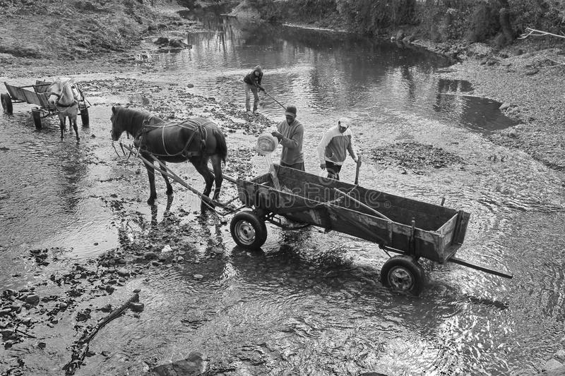 Man cleaning the horse-drawn wagon. Description: A Man cleaning the horse-drawn wagon on the river. Monochrome royalty free stock photo