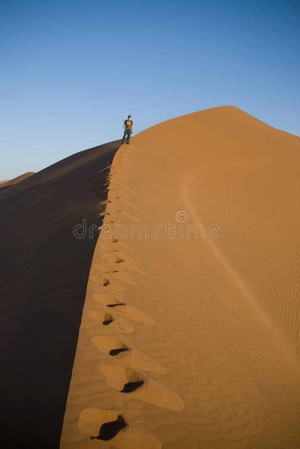 Download Man climbing sand dune stock photo. Image of reserve - 15329816