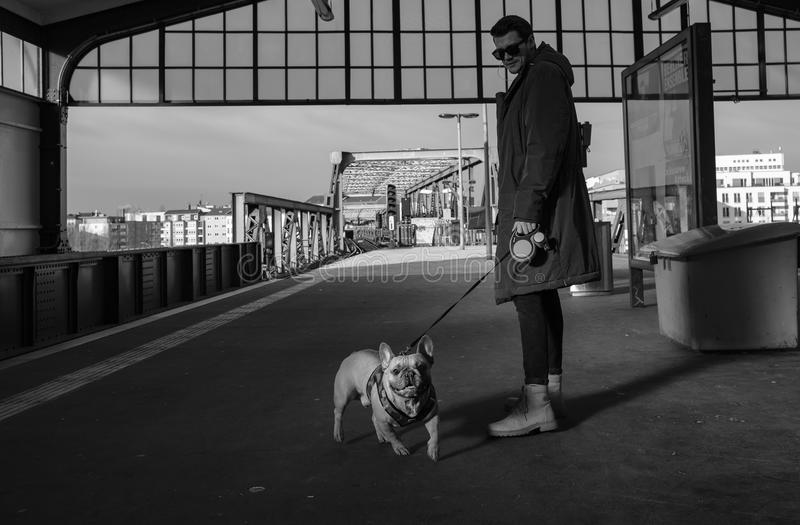 Man In Coat Holding Leash Of A English Bulldog royalty free stock photos