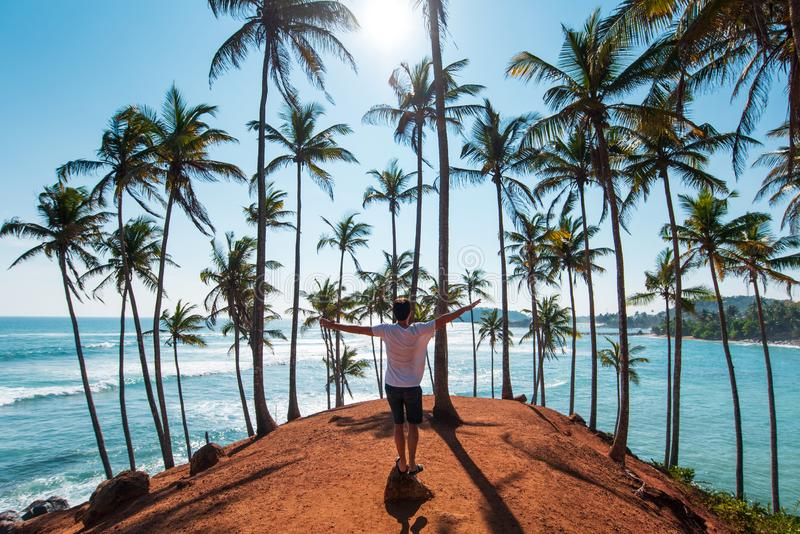 Man on coconut tree hill in Sri Lanka royalty free stock images