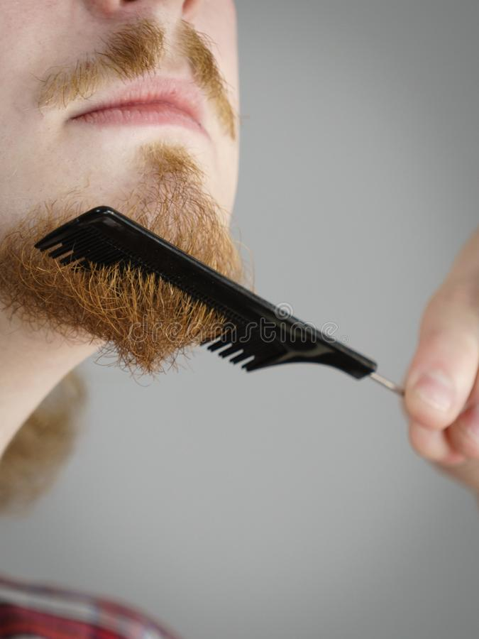 Man combing his beard. Bearded man having trouble with combing his beard using comb brush. Facial hair concept royalty free stock photography