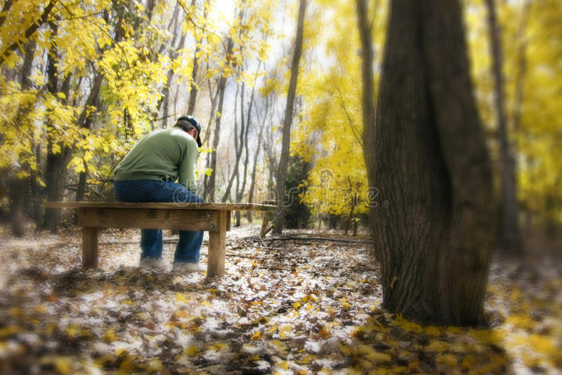 Man Contemplates Life Issues On a Bench In Fall Fo