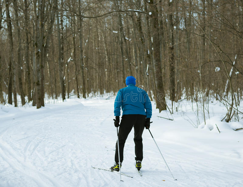 The man on the cross-country skiing in winter forest. stock images