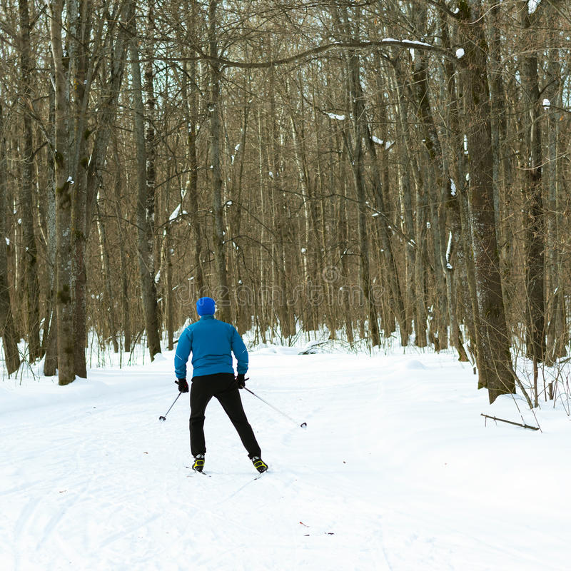 The man on the crosscountry skiing in winter forest. Ice ridge course skiing. Healthy lifestyle concept stock images