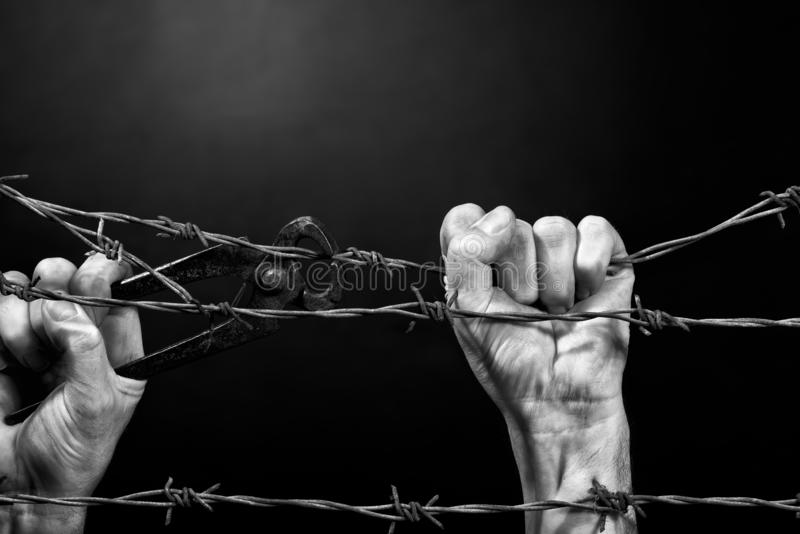 Man cuting a barbed wire fence. Black and white stock photos