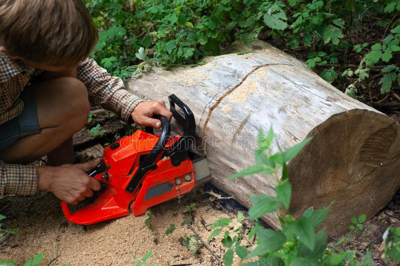 A man cuts a fallen tree with a chainsaw royalty free stock photography