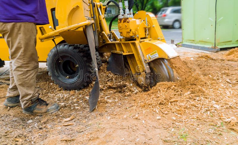 Man cuts a stump grinder in action stock photos