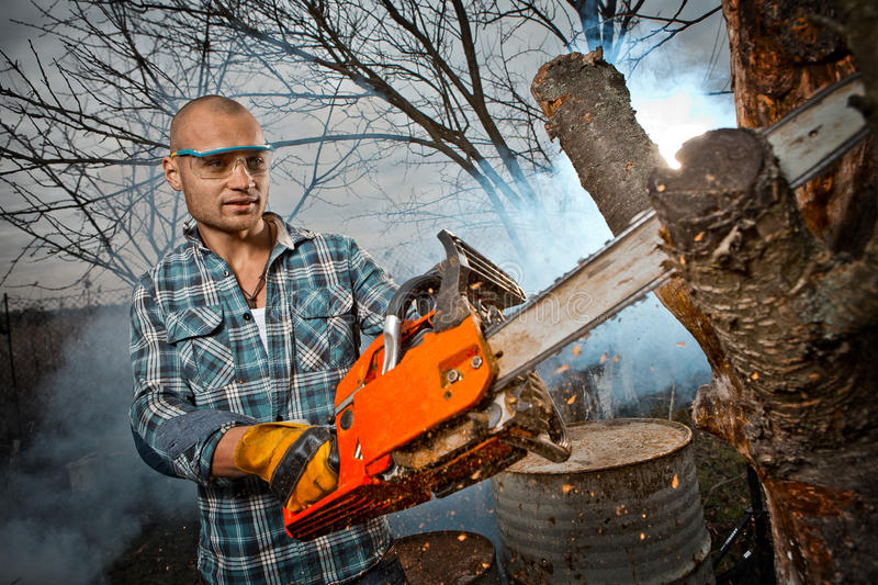 Man cutting a branch royalty free stock image